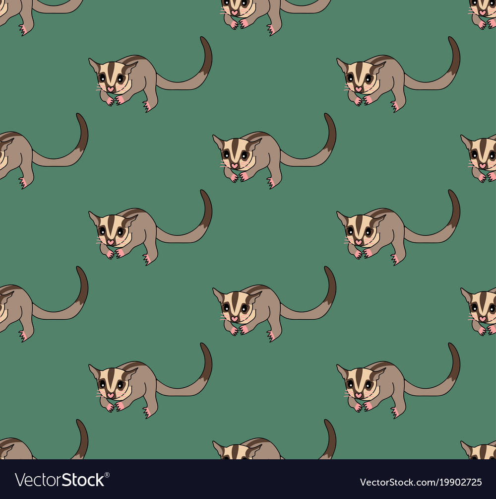 Cute sugar glider on green background vector image