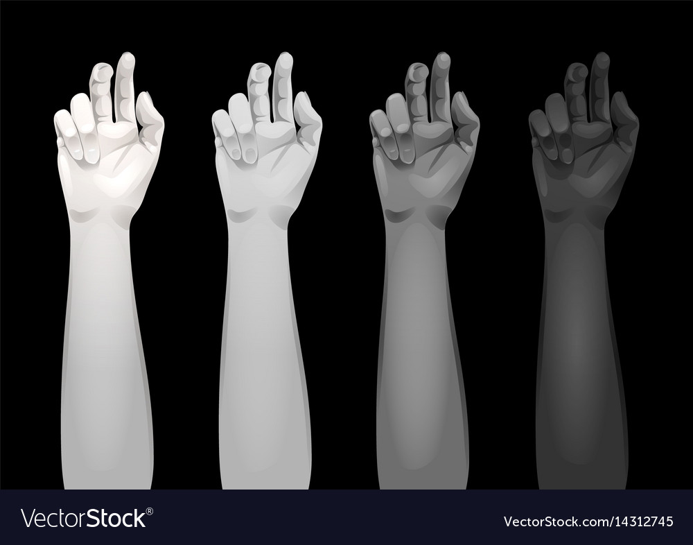 women arms templates royalty free vector image