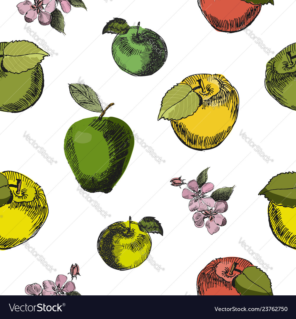 Apple sketch seamless patternvintage ink hand