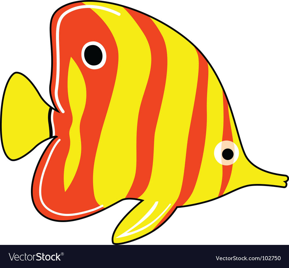 Exotic fish Royalty Free Vector Image - VectorStock
