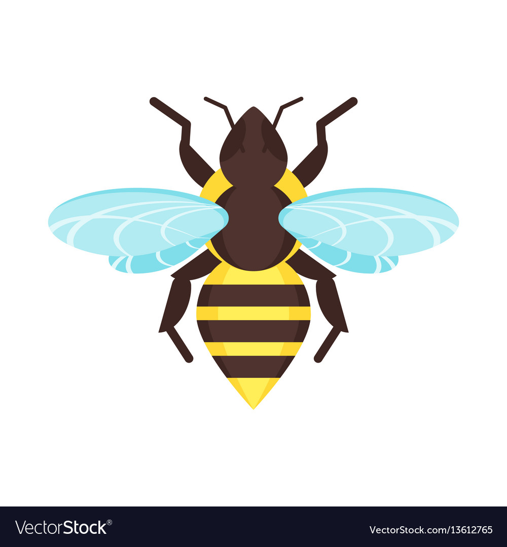 Flat style of bee