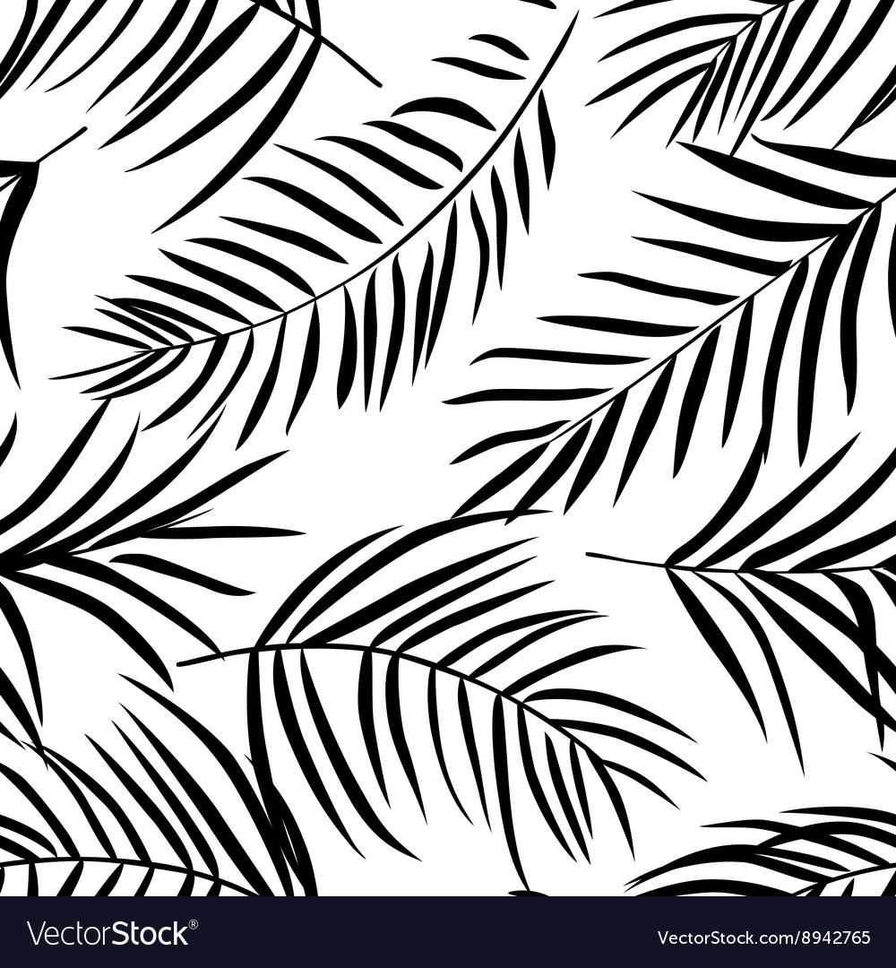 Tropical palm leaves black and white