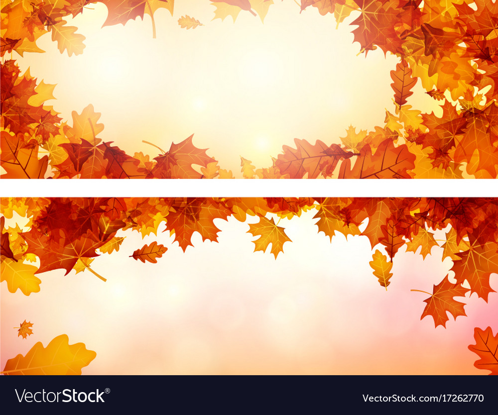 Autumn banners with orange leaves set