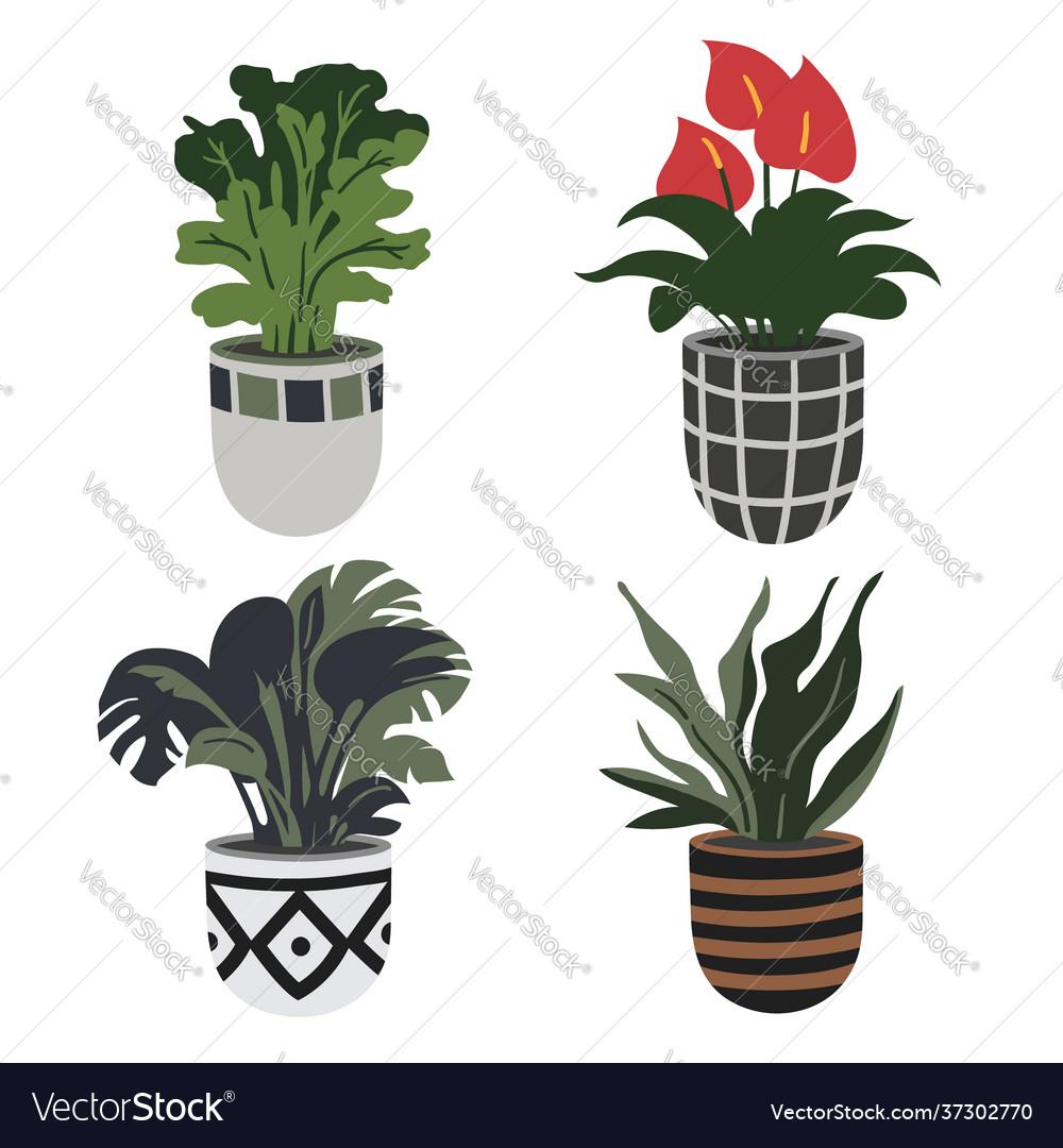 Hand drawn flower pots home garden collection