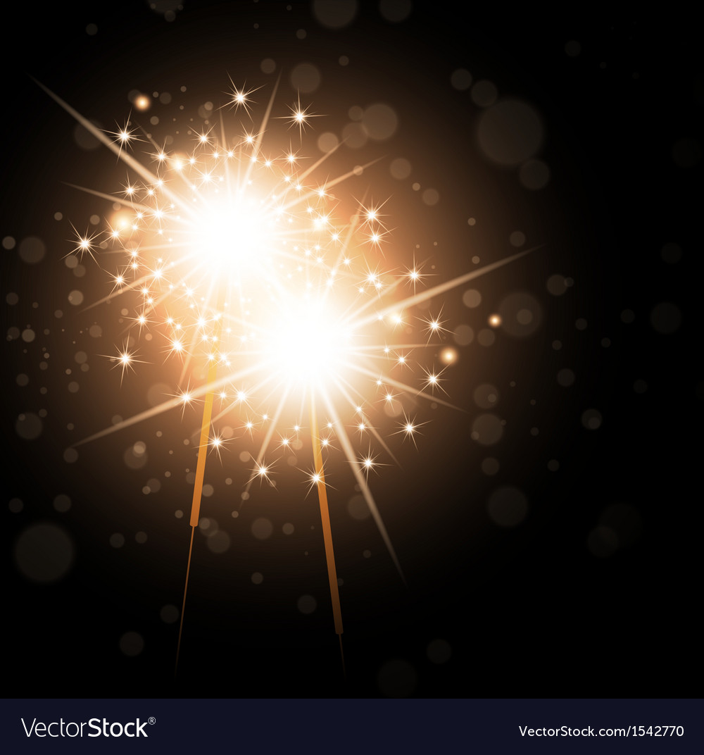 Sparklers Over Night Background vector image
