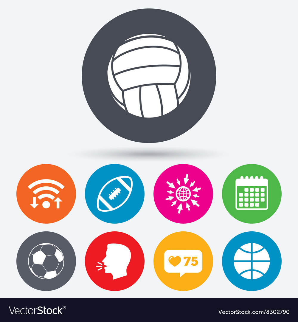 Sport balls Volleyball Basketball Soccer vector image