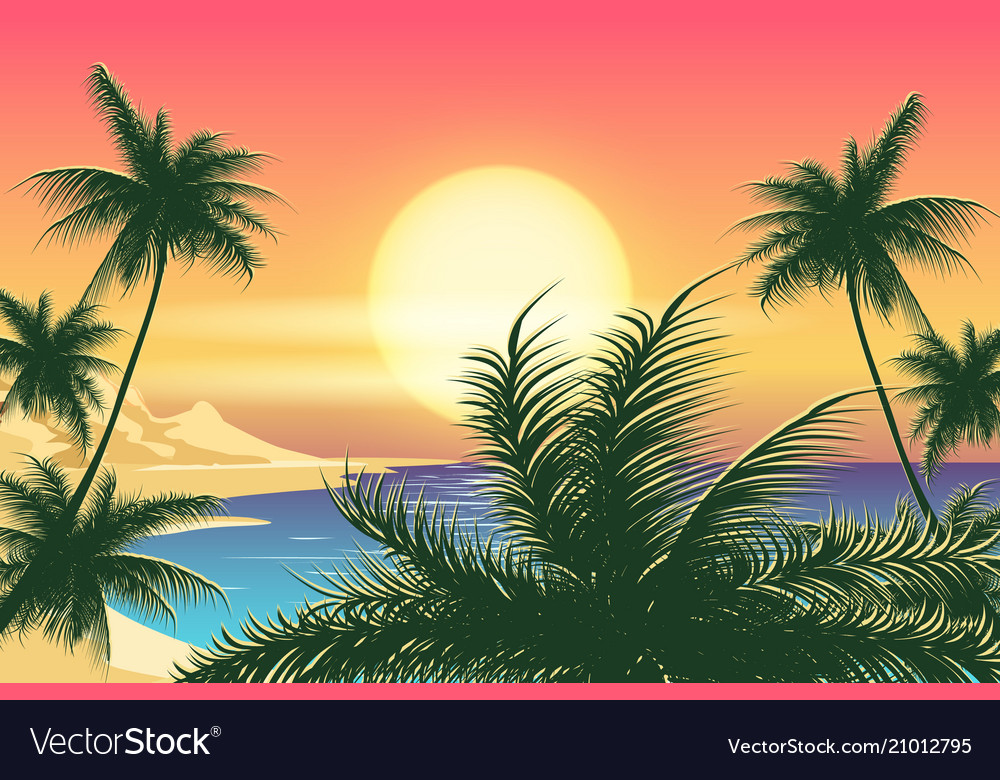 Sunset tropical landscape
