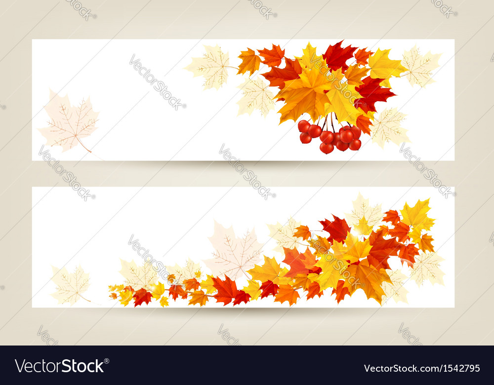 Two autumn banners with color leaves