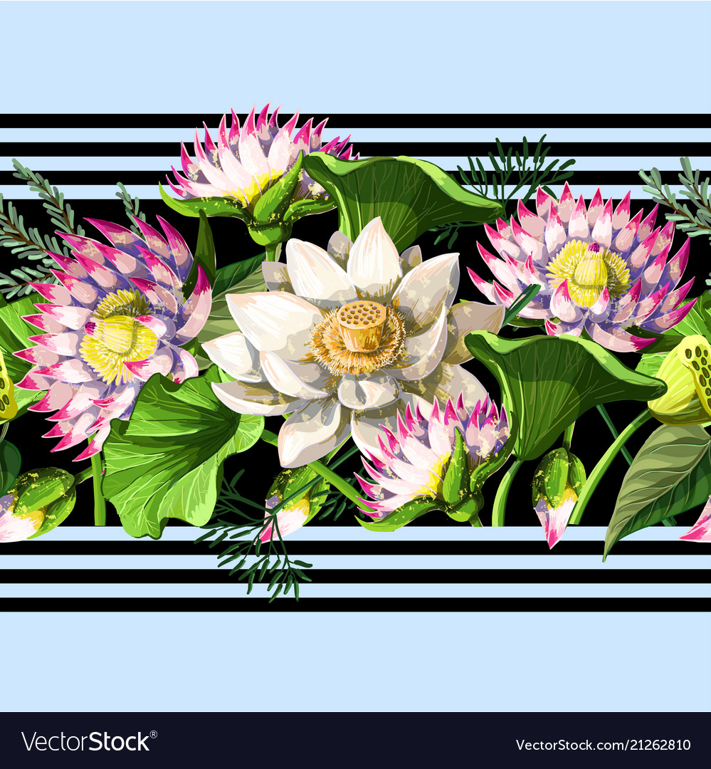 Border with waterlily hand draw