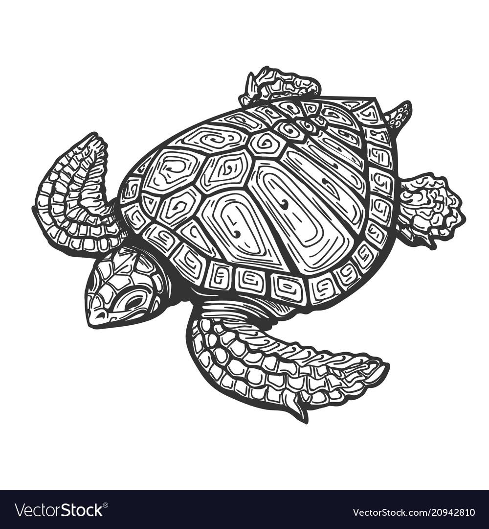 Sea turtle tattoo Royalty Free Vector Image - VectorStock