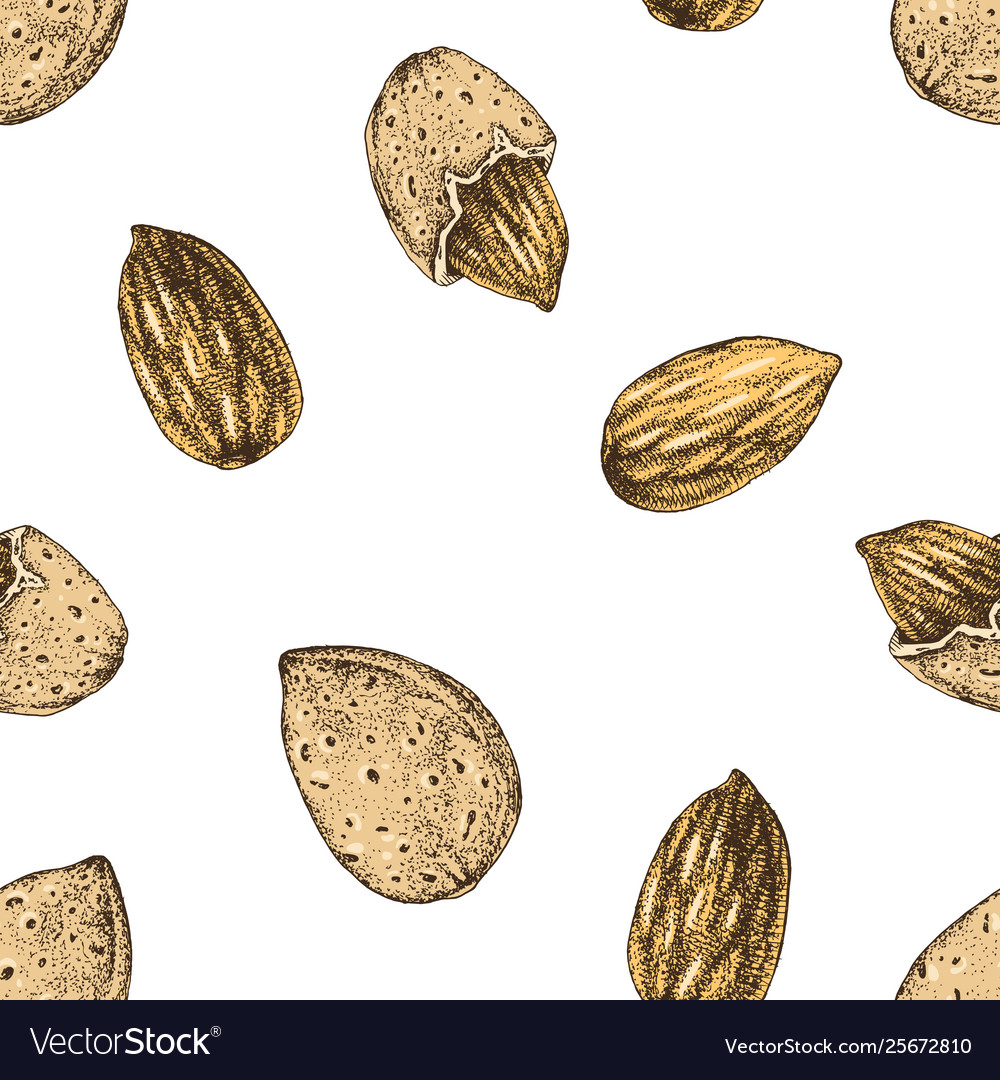 Seamless pattern with hand drawn almonds