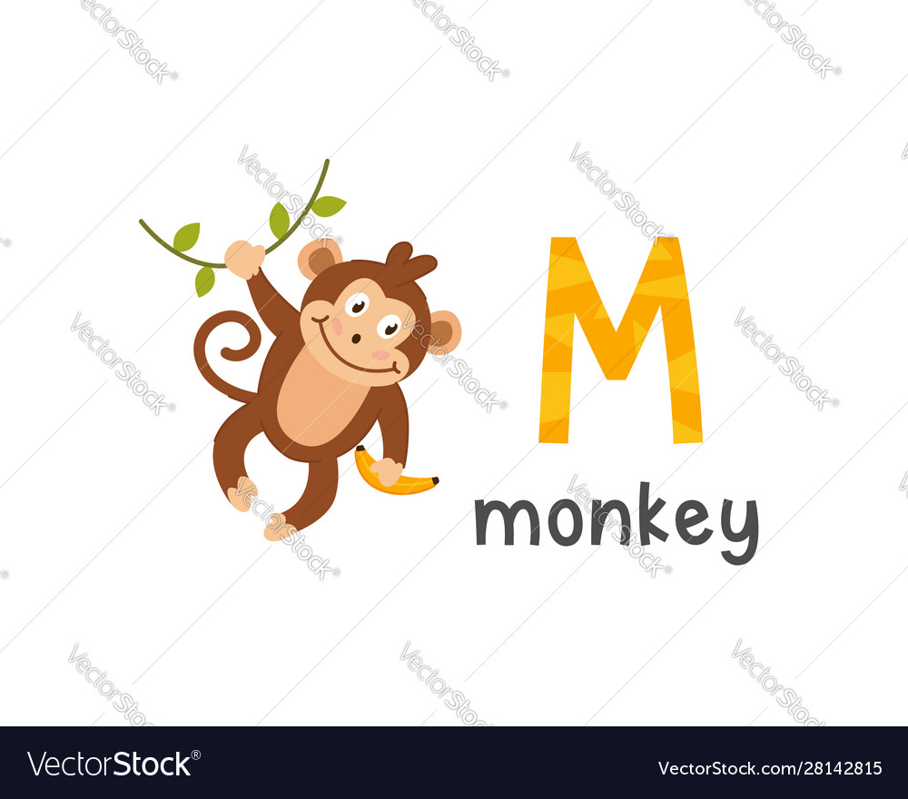 Alphabet letter m and monkey