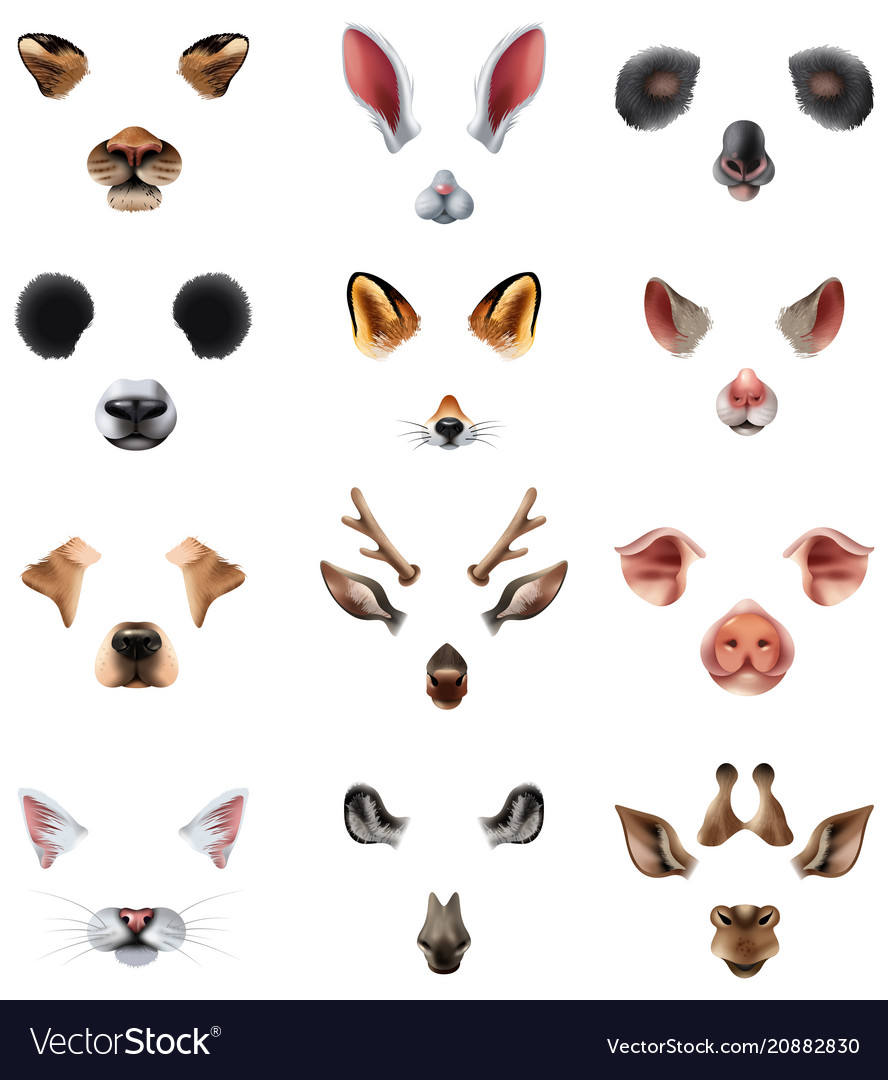 Cute animal masks video chat application effect