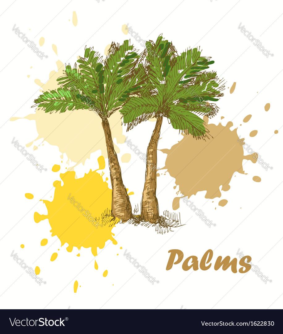 Palms background