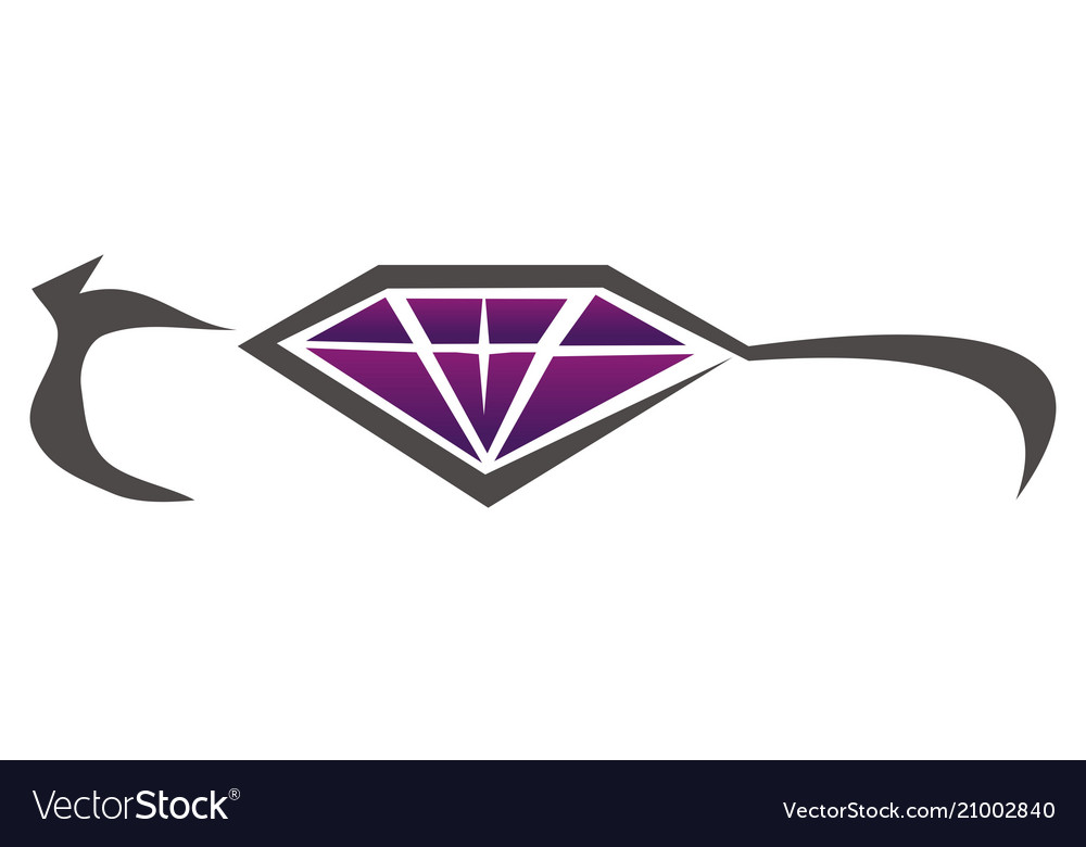 Diamond Car Beauty Accessories Royalty Free Vector Image