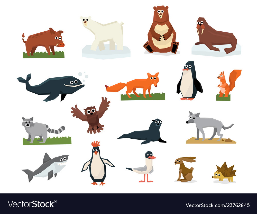 Cartoon collection of different arctic and