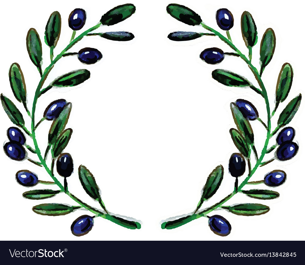 Olive branch wreathe vector image