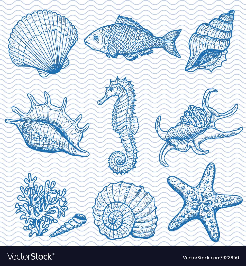 Sea hand drawn vector image