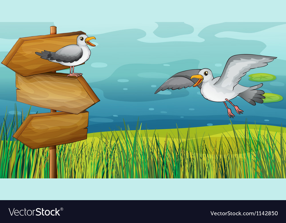 Two chirping birds vector image