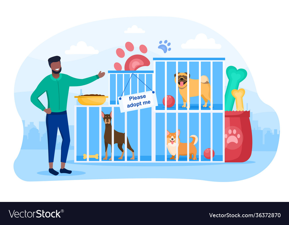 Male character is working in dog shelter