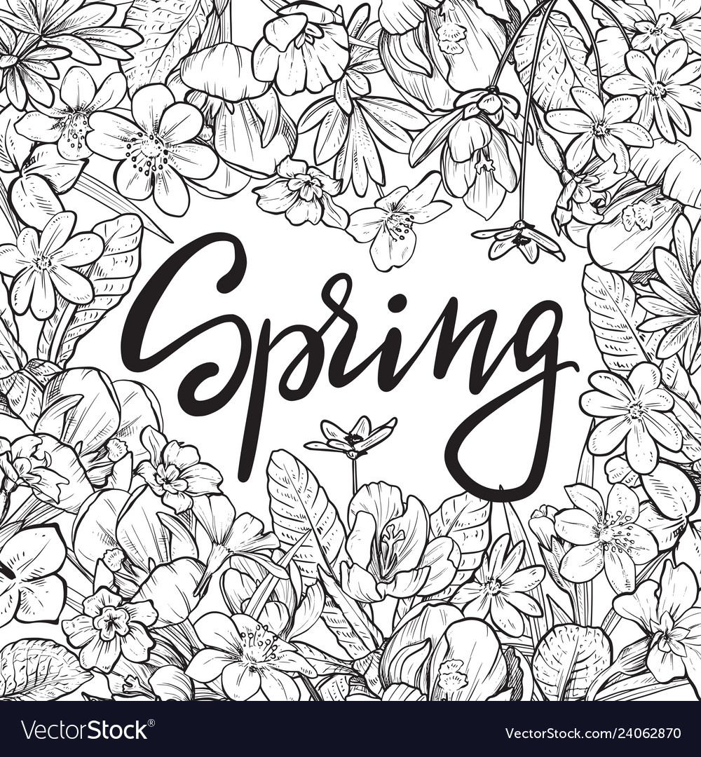 Spring text hand lettering with hand drawn