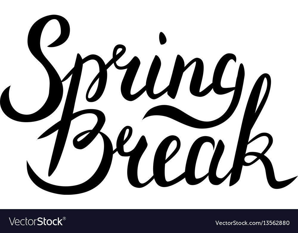 Spring break lettering vector image