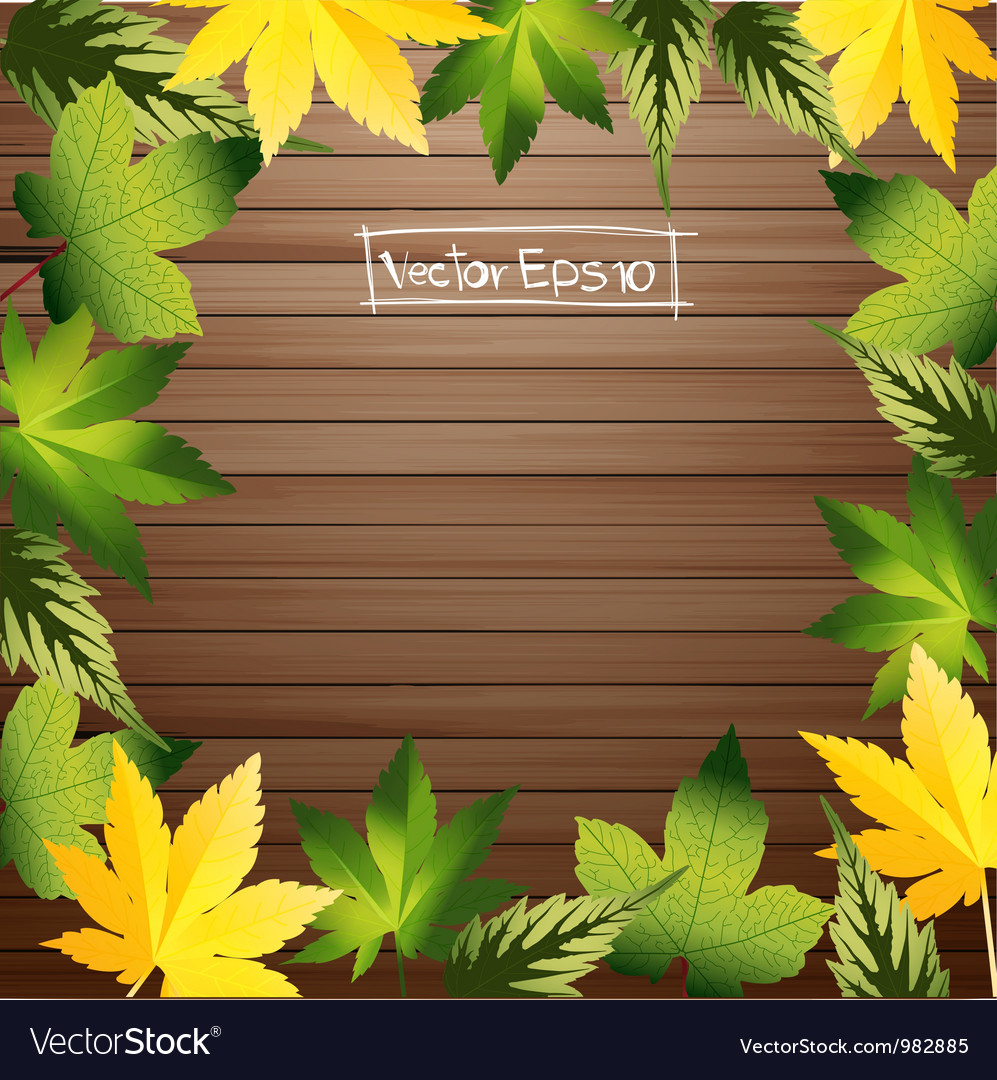 Green leaves frame with wood background