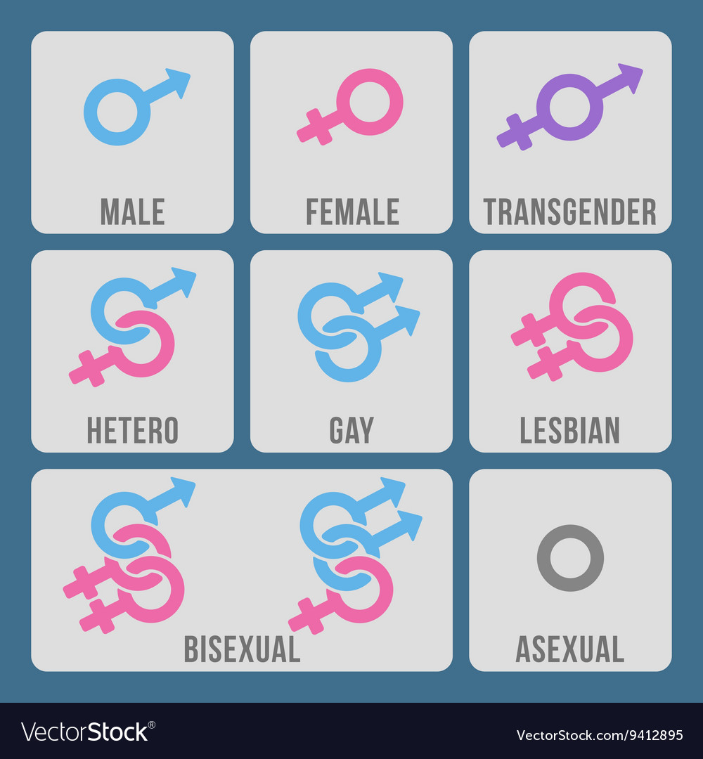 Gender and sexual orientation color icons vector image