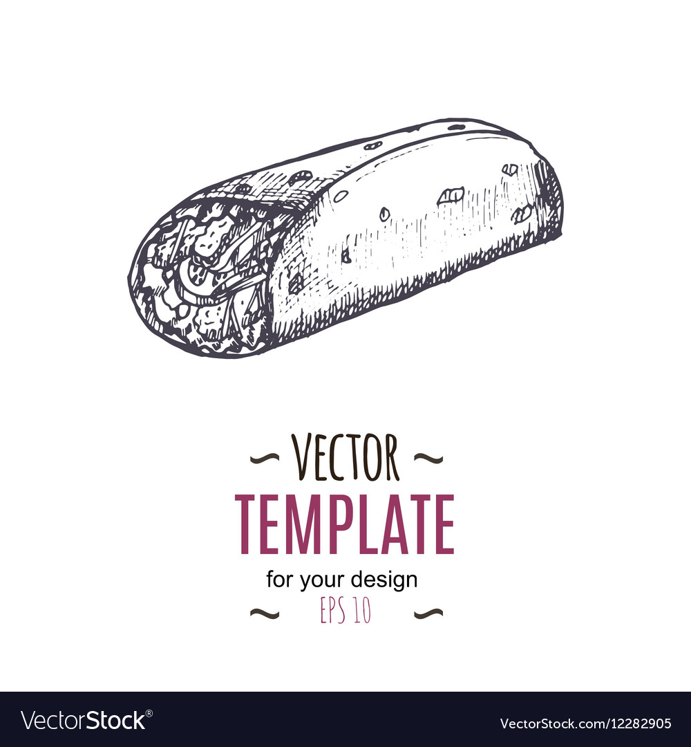 Vintage burrito drawing Hand drawn vector image