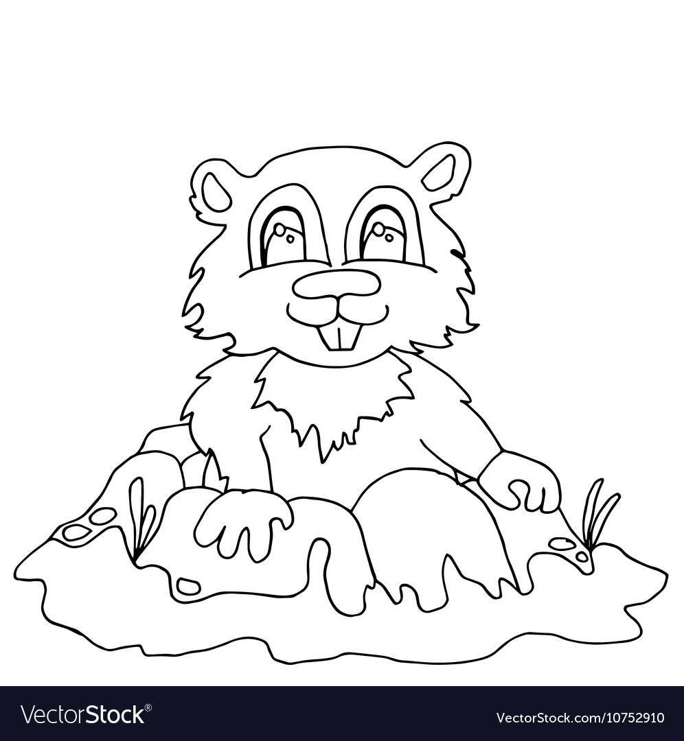 High quality chipmunk drwan in outline for