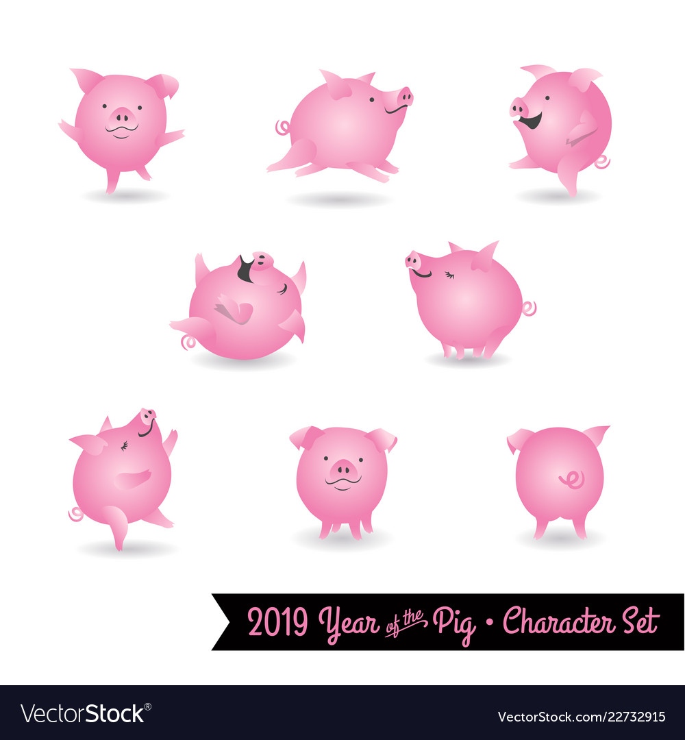 set of pig characters for year of the pig vector image