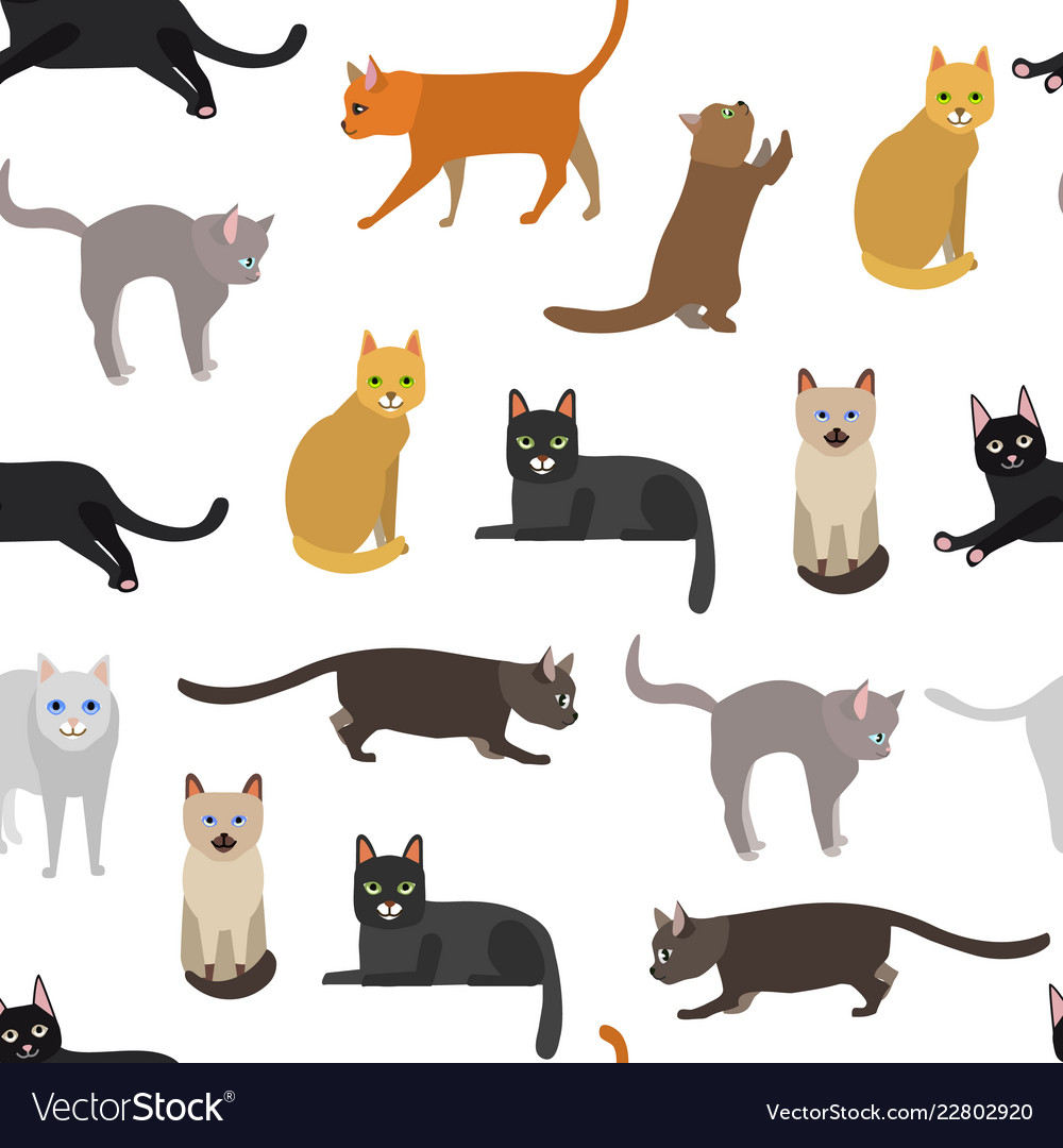Cartoon different types cute cats characters