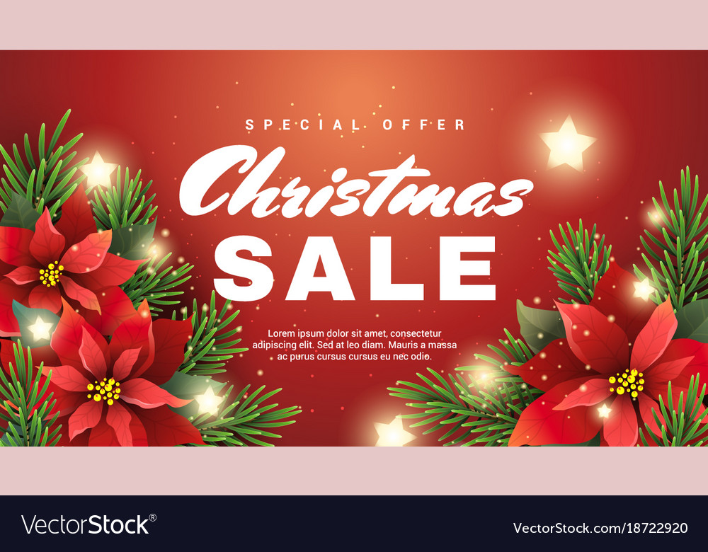 c27705016c Christmas sale banner with christmas star flower Vector Image