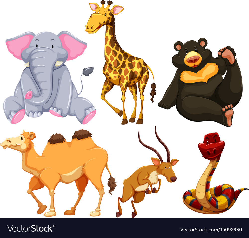 Six different types of wild animals Royalty Free Vector