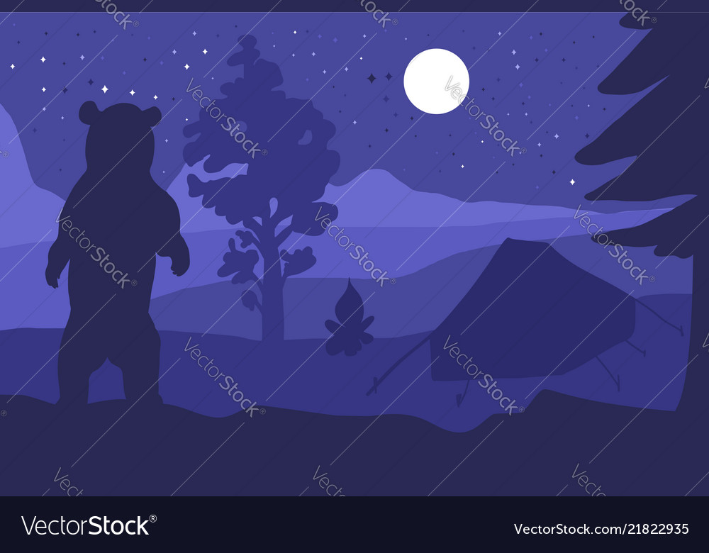 Walking bear in forest mountain camp at night