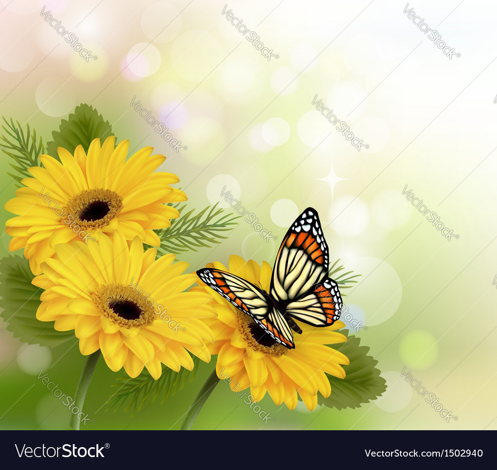 Nature Flowers Background Royalty Free Vector Image