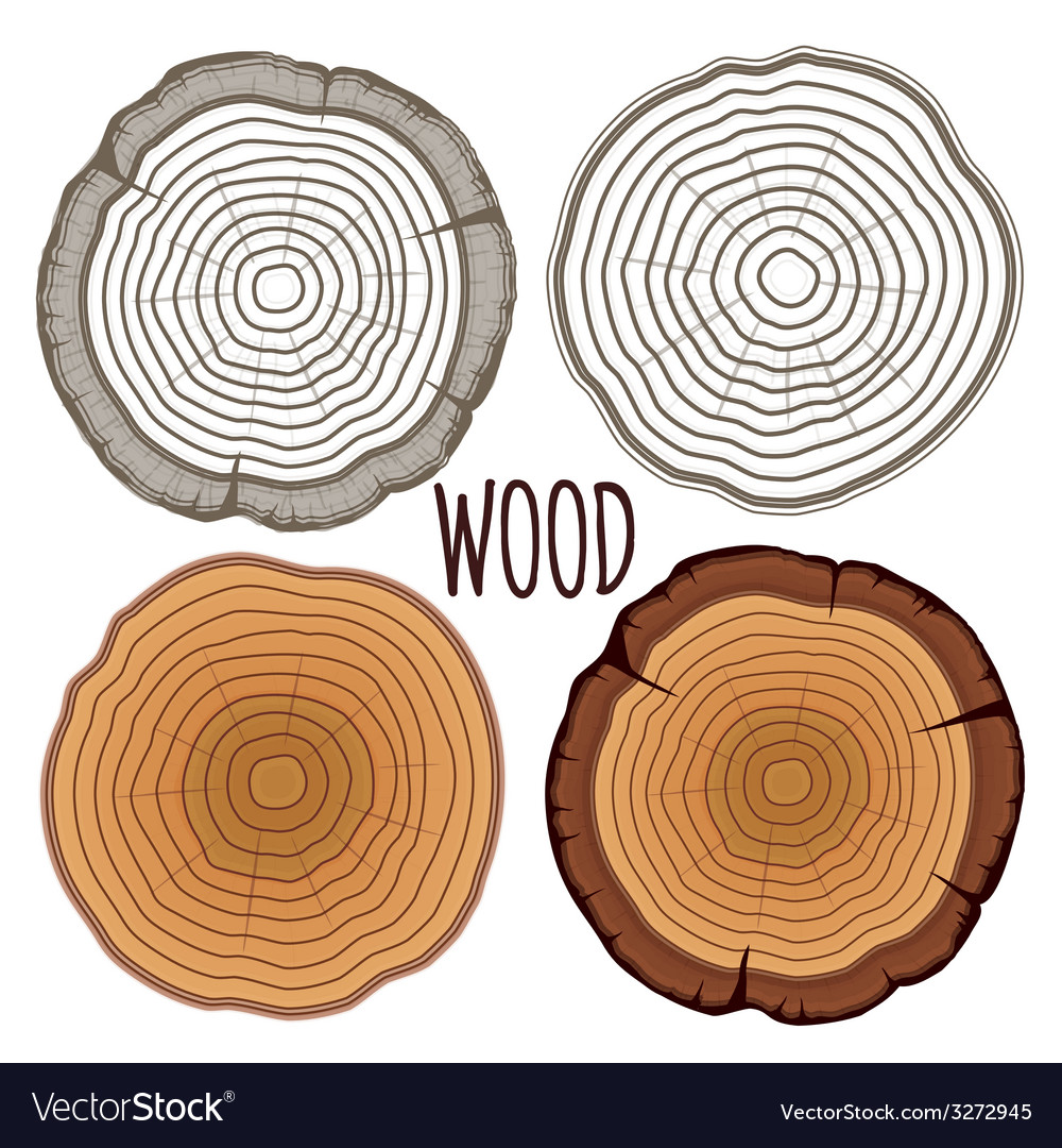 free royalty tree image rings vectorstock vector