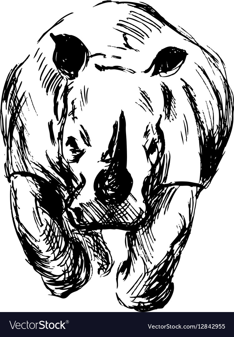 Hand sketch of the running rhino