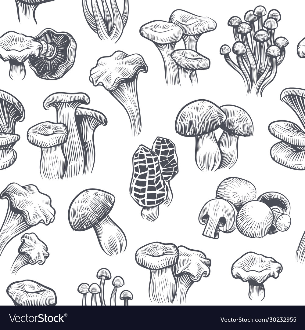 Mushroom seamless pattern sketch various