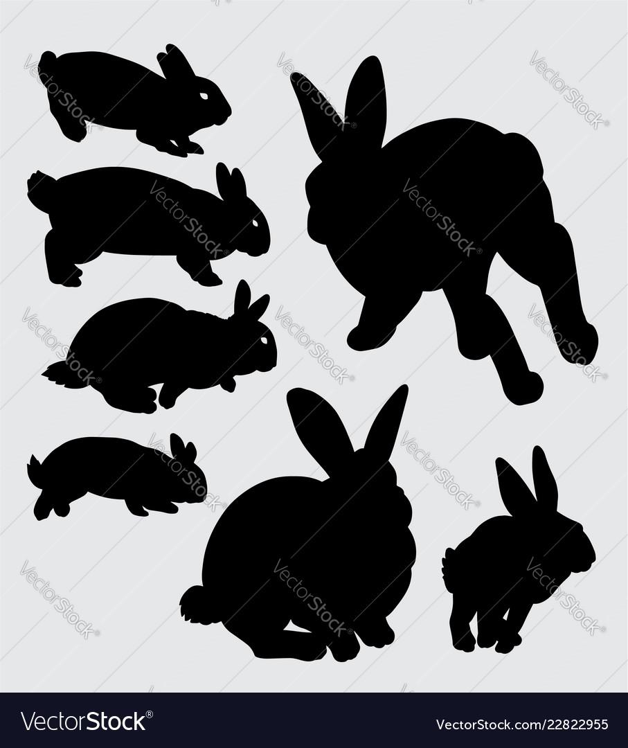 Rabbit animal silhouette