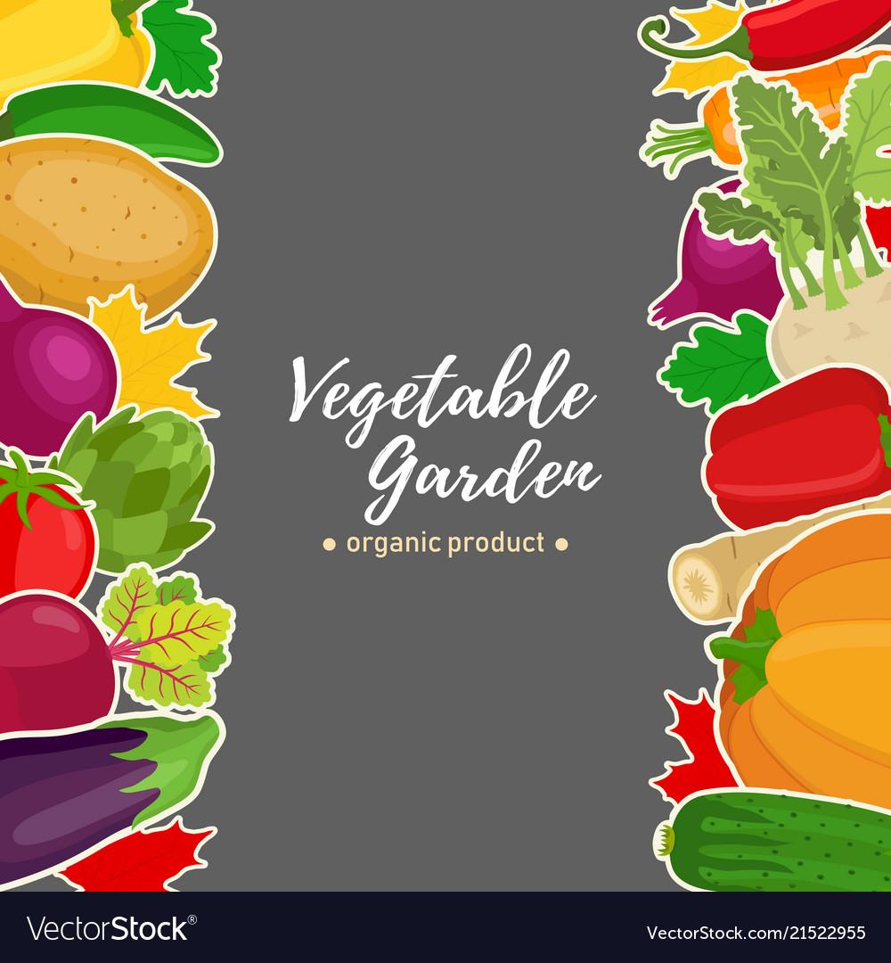Vegetable set background for voucher