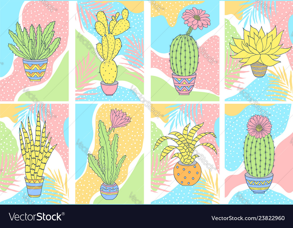 Cards with cactuses