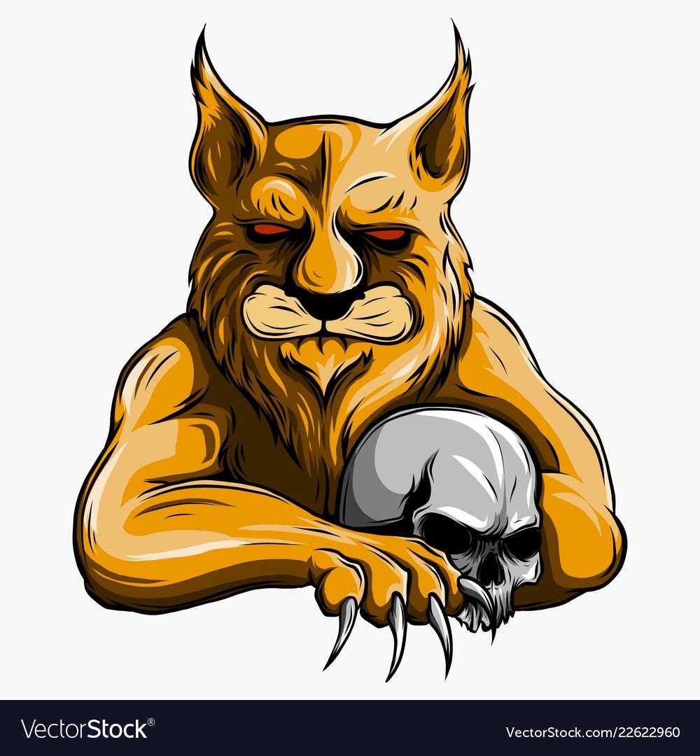 Tiger anger of a tiger head