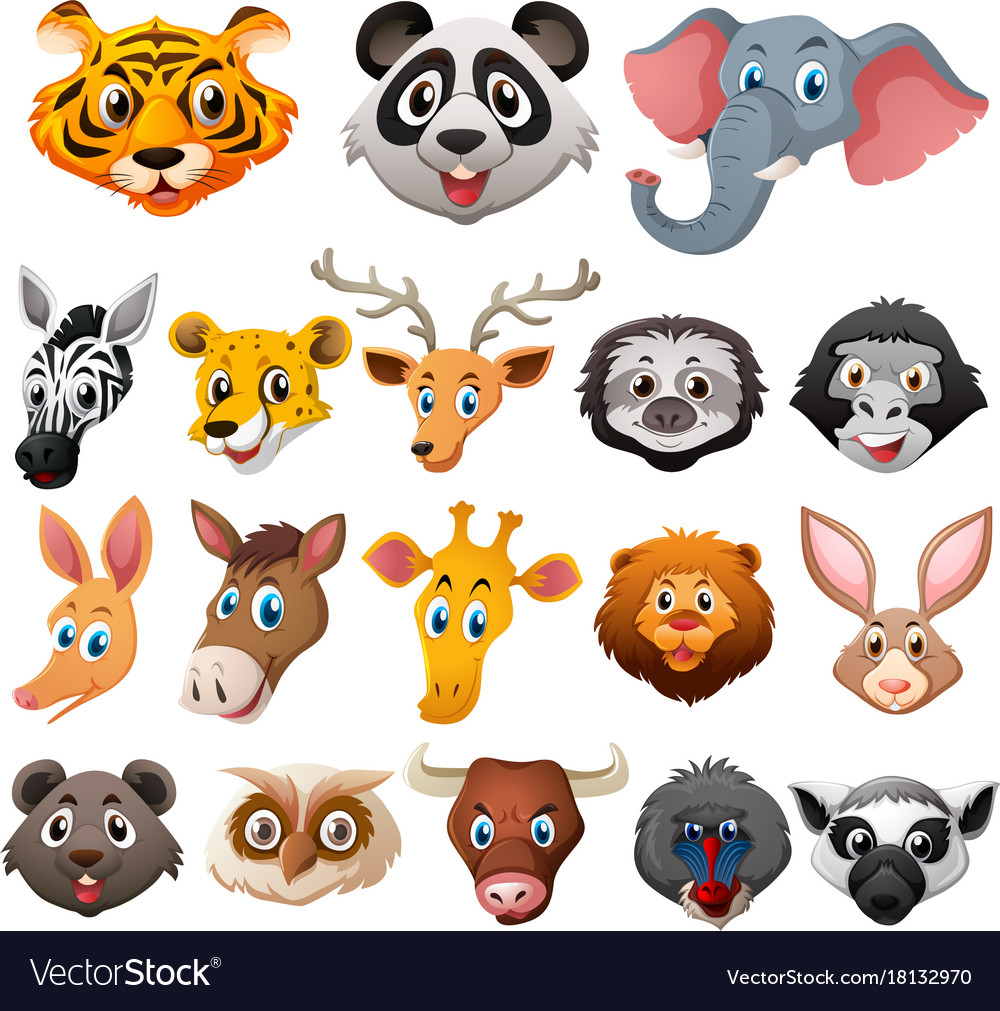 Different faces of wild animals Royalty Free Vector Image