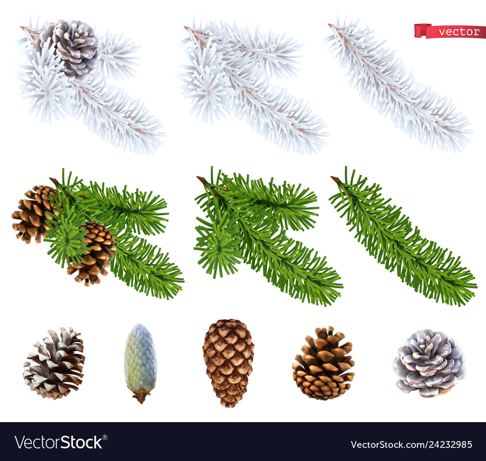 Christmas trees and pine cones 3d realistic icon