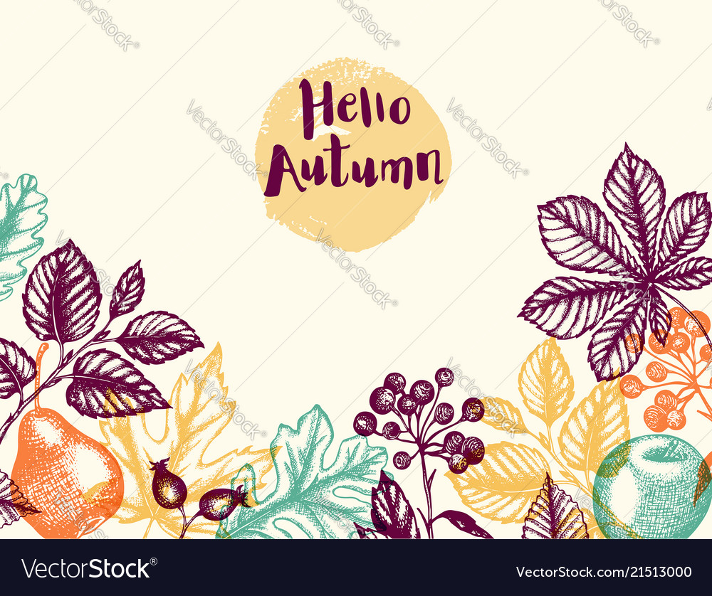 Autumn background with leaves and fruits