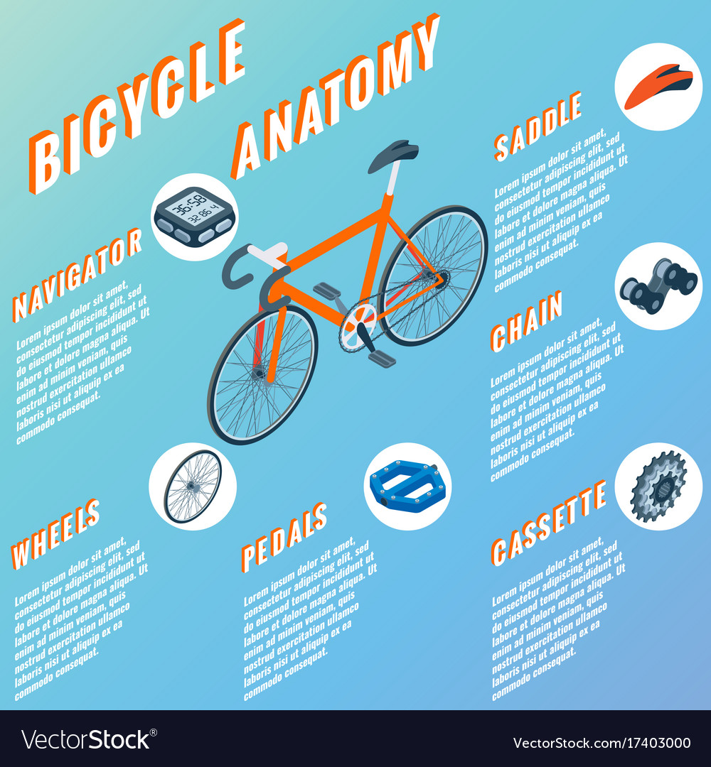 Bicycle anatomy concept infographic set of