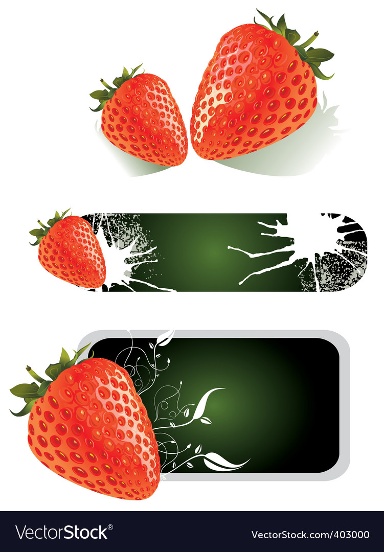 Strawberry food design vector image