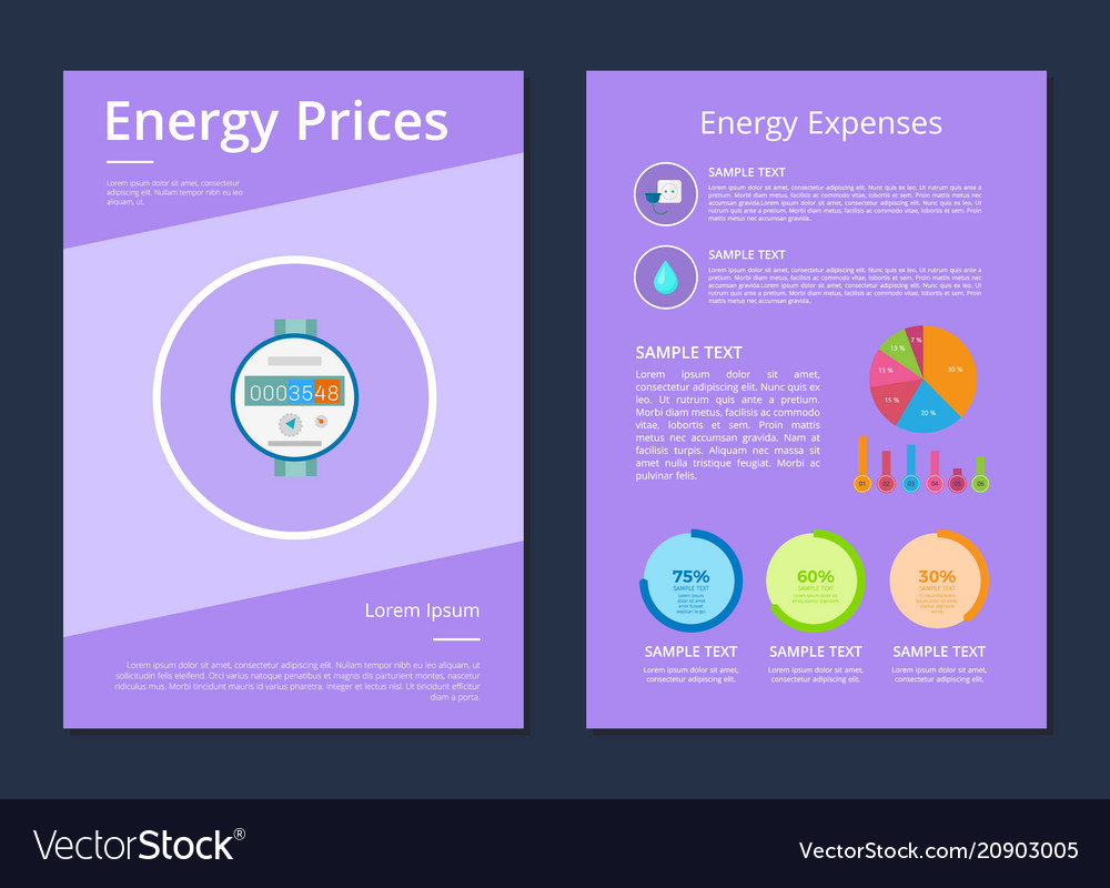 Energy prices and expenses two statistics posters