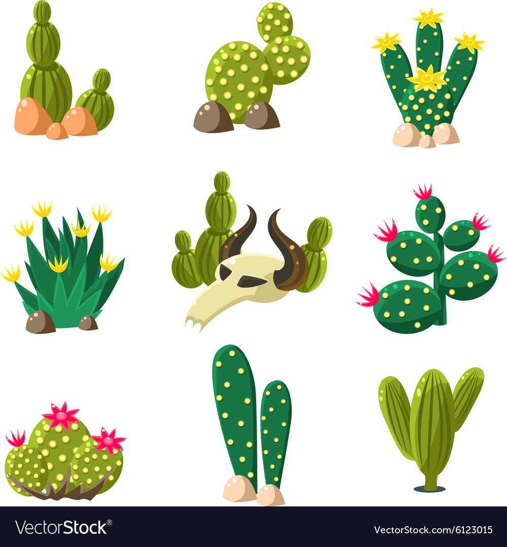 Cactus and Skull Icons Set vector image